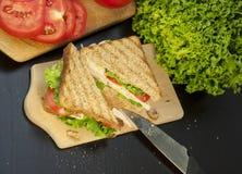 smörgåskalkon Royaltyfri Bild