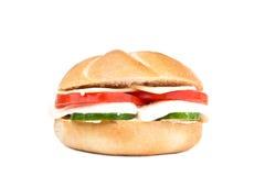 smörgåsvegetarian Royaltyfria Foton