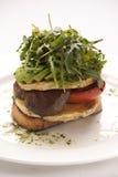 smörgåsvegetarian arkivfoto