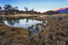 SM crackenback grass frost. Thredbo valley of river and ponds aroung Crackenback resort in SNowy mountains of Australia. Cold winter morning set ice on pond`s Royalty Free Stock Image