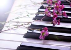 Sm? rosa blommor p? pianot arkivfoton
