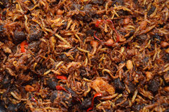 Smażąca chili wołowina Fotografia Stock
