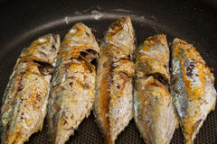Smażąca makrela na niecce Zdjęcia Royalty Free