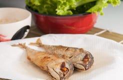 Smażąca makreli ryba Obraz Royalty Free