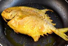 Smażąca Pomfret ryba Fotografia Royalty Free