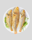 Smażąca ryba Zdjęcie Stock