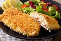 Smażący Arktyczny przypala rybi polędwicowego w breadcrumbs i świeżym warzywie Obraz Royalty Free