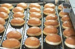 Smażący Donuts Na konwejerze Obraz Royalty Free