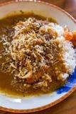 Smażący dziecko ośmiornicy curry'ego ryż i susząca ryba Fotografia Royalty Free