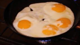 Smażący jajko, jajka i pomidory, Rzucony niecki Omelette, mennica, Dolly strzał, ekstremum zamknięty up, Zamykamy w górę strzału, zdjęcie wideo