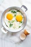 Smażący jajko z zielonym szpinakiem Obraz Royalty Free