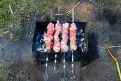 Smażący mięso Zdjęcia Stock