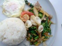 Smażący owoce morza z korzennymi ziele Tajlandzki korzenny zielarski jedzenie Fotografia Stock