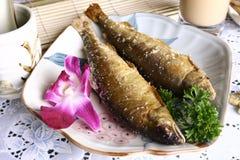 smażący porcelanowy wyśmienicie rybi jedzenie Zdjęcie Royalty Free