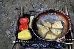 Smażący ryba, pomidory i pieprze na grillu, obraz royalty free
