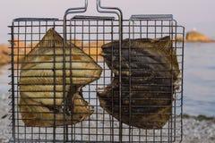Smażący rybi grill na seashore Zdjęcia Royalty Free