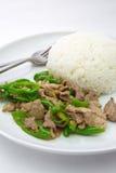 Smażący zielony chili z wieprzowiny, Tajlandzkiego i Chińskiego jedzeniem Obrazy Royalty Free