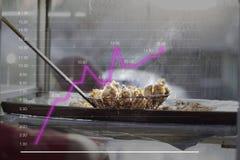 smażone tofu na kreskowym wykresie wzrost w smażyć karmowych sprzedażach wykłada Narosły smażący karmowy sprzedawca obraz royalty free