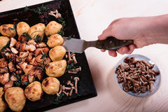 Smażyć grule z kurczakiem i pieczarkami na różowym tle Fotografia Stock