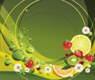 Smaak van de Zomer. Stock Fotografie