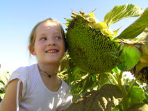 Smail. Redhead girl smiling to sunflower Stock Photos