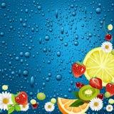 Smak av sommar. Fotografering för Bildbyråer
