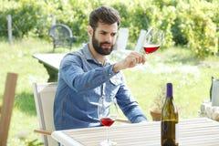 Smaka det nya vinet Royaltyfri Foto