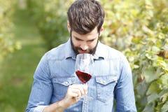 Smaka vinet Arkivfoton