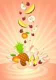Smakelijk fruit in yoghurt Royalty-vrije Stock Fotografie