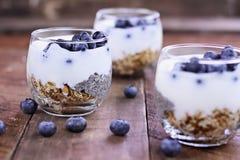 Smakelijk Kefir Yoghurt en Chia Parfait Royalty-vrije Stock Foto