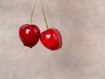 Smakelijk kersenfruit Stock Afbeelding
