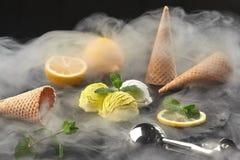 Smakelijk romig die en citroenroomijs met munt wordt verfraaid in rook op een steenlei wordt gediend over een zwarte achtergrond stock foto