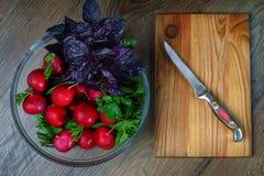 Smakelijk vers gewassen, vers radijs en basilicum in een vergiet, naast het is er een raad voor scherp voedsel en een mes ligt  royalty-vrije stock fotografie