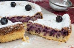 Smakelijke blackcurrant cake Stock Afbeelding