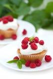 Smakelijke cake met frambozen Royalty-vrije Stock Foto's