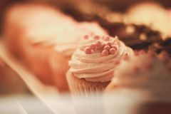 Smakelijke cupcakes royalty-vrije stock afbeeldingen
