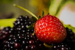 Smakelijke de zomervruchten op lijst. Kers, Blauwe bessen, aardbei, frambozen, Braambessen, granaatappel Stock Foto