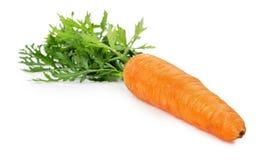 Smakelijke die wortel op de witte achtergrond wordt geïsoleerd Stock Foto's