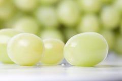 Smakelijke druiven Stock Foto