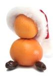 Smakelijke fruitsneeuwbal Stock Foto