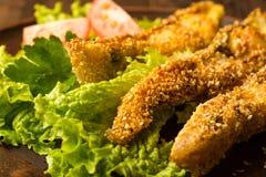 Smakelijke gebakken vissen Royalty-vrije Stock Foto's
