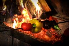 Smakelijke geroosterde groenten op brand Royalty-vrije Stock Fotografie