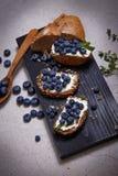 Smakelijke gezonde van de de roomkaasbosbes van het voedselbrood sappige organisch Stock Fotografie