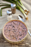Smakelijke greens soep Royalty-vrije Stock Afbeelding
