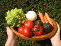 Smakelijke groenten Royalty-vrije Stock Foto