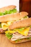 Smakelijke ham, salami, van Turkije en van het rundvlees sandwiches Royalty-vrije Stock Afbeelding