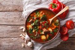 Smakelijke Hongaarse goelasjsoep bograch en ingrediënten horizontaal Stock Fotografie