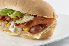 Smakelijke Hotdog Royalty-vrije Stock Foto