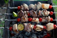 Smakelijke kebab met groenten op vleespennen op barbecue over mede Royalty-vrije Stock Afbeeldingen