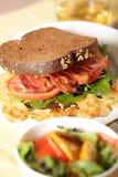 Smakelijke lunch Royalty-vrije Stock Fotografie